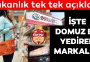 Domuz eti, eşek eti, boyalı çay.. 386 üründe taklit ve tağşiş tespit edildi! İşte o markalar