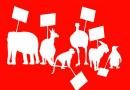 Hayvan Hakları İzleme Komitesi: Hayvanların karşılaştığı hak ihlallerinin devam ettiği bugünü kutlamıyoruz